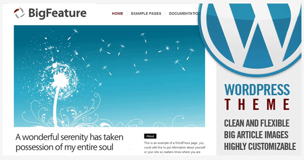 Beste WordPress theme van 2014 Bigfeature