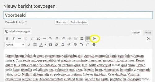 knop-toevoegen-wp-editor