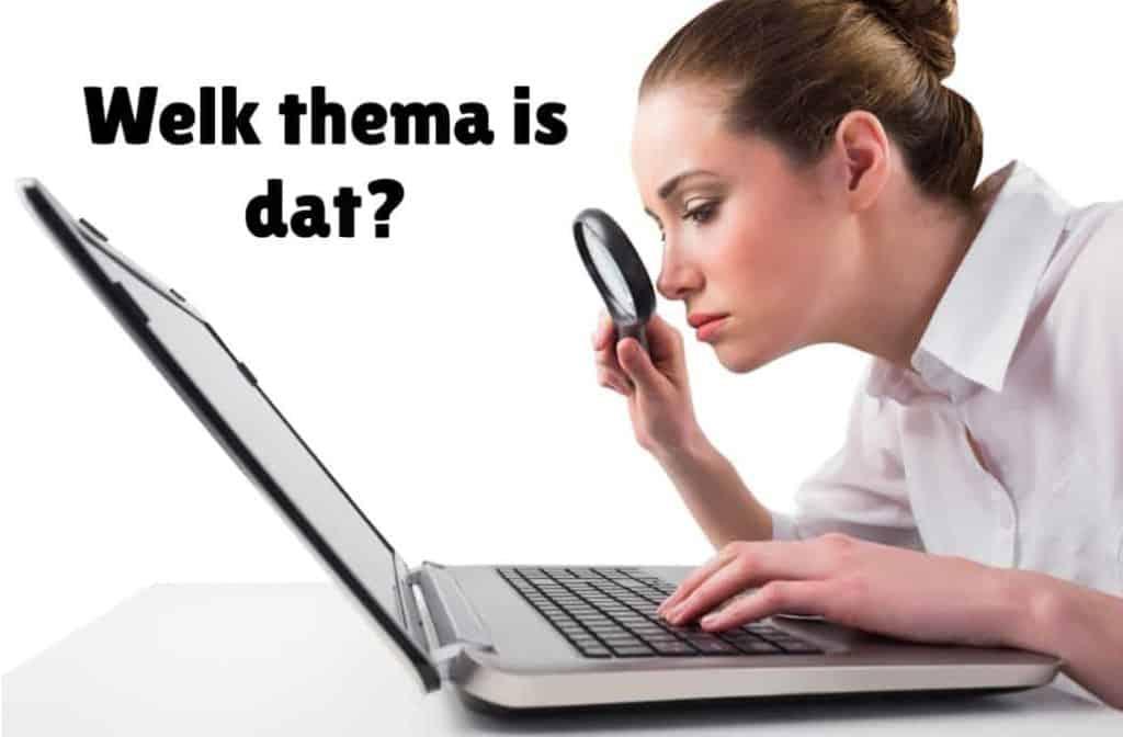 Welk WordPress thema is gebruikt - vrouw die themanaam zoekt op computer