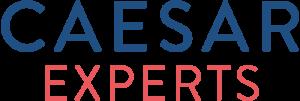 caesar experts Utrecht cursus WordPress