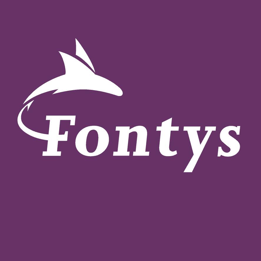 Mailchimp training bij Fontys